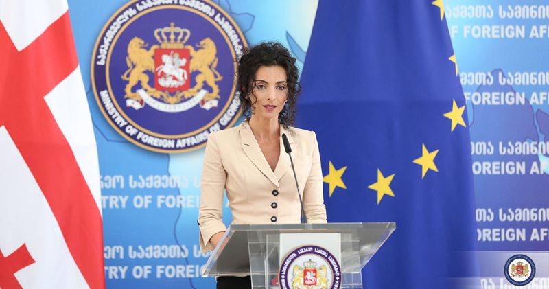 """Gürcistan'dan''Diaspora Mensupları Girişimleri Destek Programı"""" açıklaması!"""