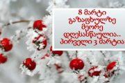 8 მარტი / Tehlike Altindaki Dillerden Kadınların Mesajı Var!