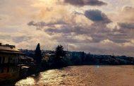 თემურ  ნიკოლაძე: მზის  მოდარაჯე   ფოტოხელოვანი